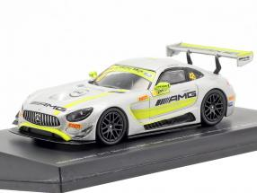 Mercedes-Benz AMG GT3 #48 Winner FIA GT World Cup Macau 2017 Mortara 1:64 Spark