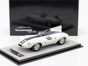 Jaguar D-Type #60 Winner Watkins Glen GP 1955 Johnston 1:18 Tecnomodel