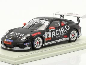 Porsche 911 GT3 Cup #8 Porsche Carrera Cup champion Brazil 2018 W. Neugebauer 1:43 Spark